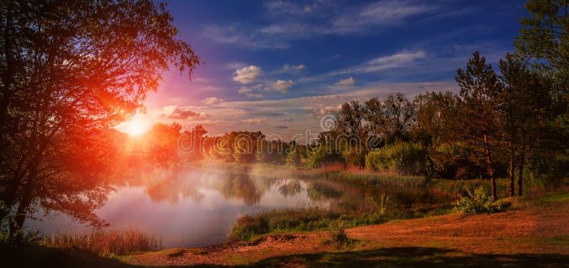 在湖的有雾的日出在春天在河的森林意想不到的风景在光亮的阳光下 庄严美丽如画的太阳 库存图片