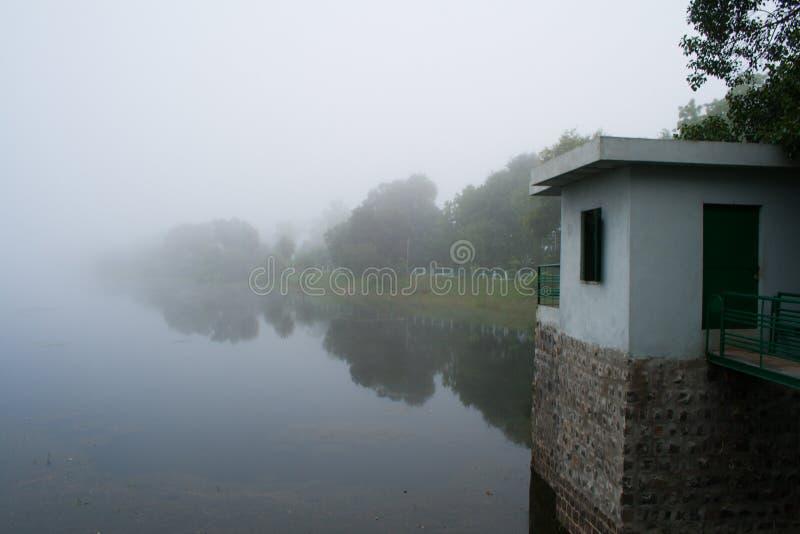 在湖的有雾的早晨 免版税库存照片