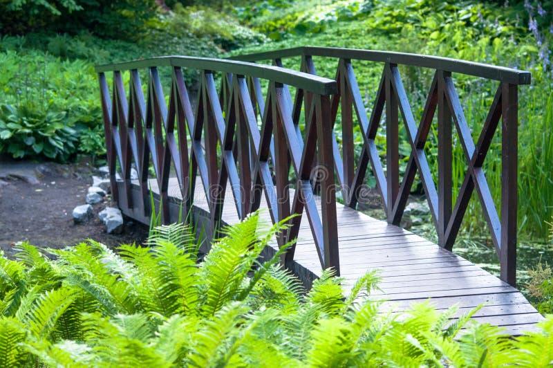 在湖的桥梁在森林里 免版税库存照片