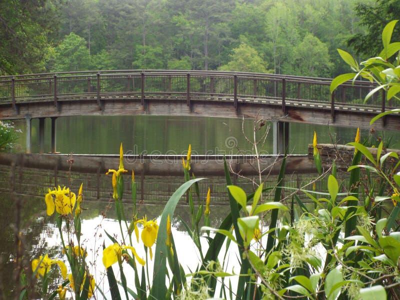 在湖的桥梁 图库摄影