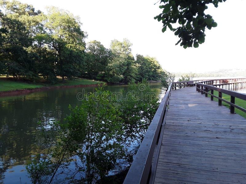 在湖的码头 图库摄影