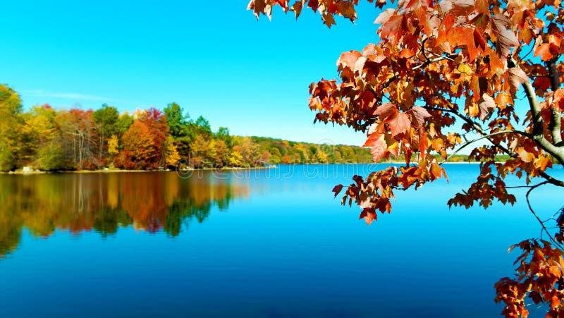 在湖的秋天在新英格兰 免版税库存图片