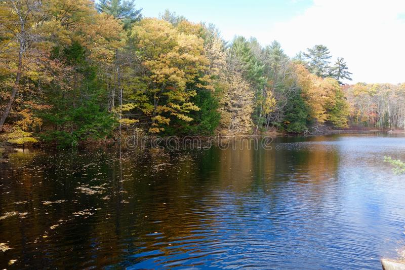 在湖的秋天风景 免版税库存图片