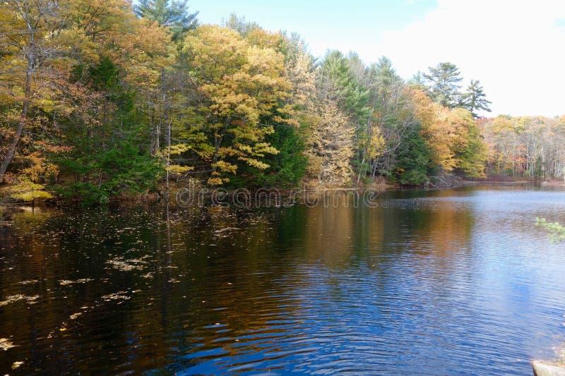 在湖的秋天风景 库存照片