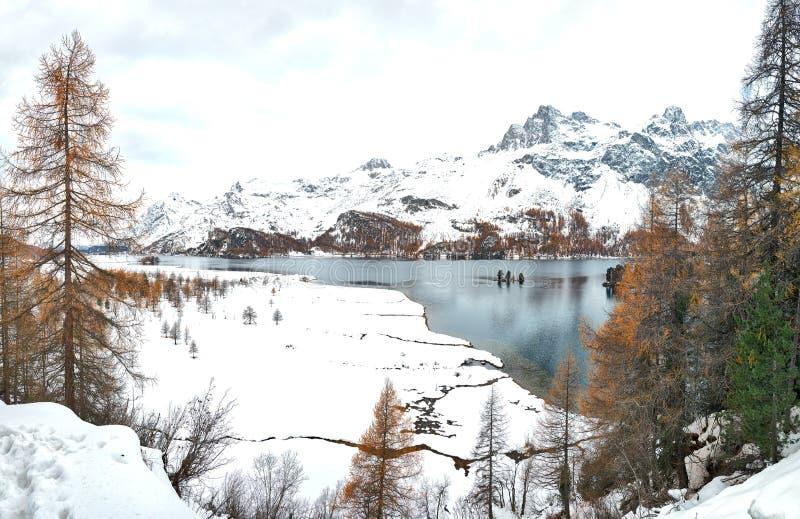 在湖的第一秋天降雪Engadine谷的瑞士 免版税图库摄影
