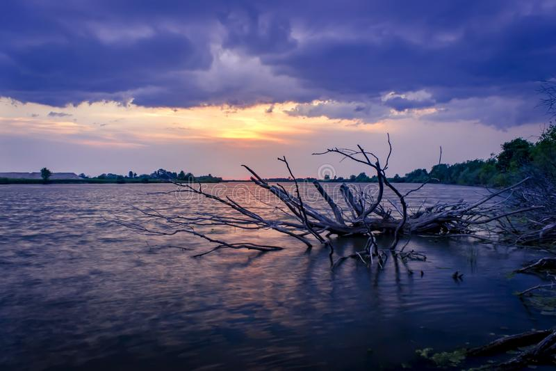 在湖的美好的紫色夏天日落 免版税图库摄影