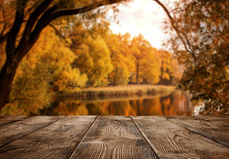 在湖的老空的木桌 库存图片
