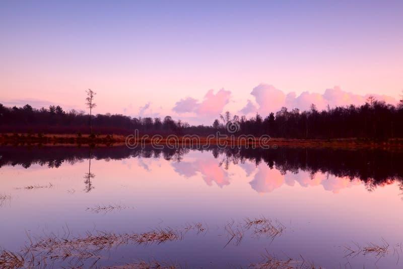 在湖的镇静日落在Dwingelderveld 库存照片