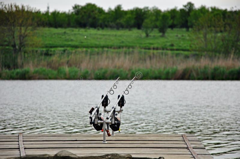在湖的鲤鱼渔 免版税库存照片