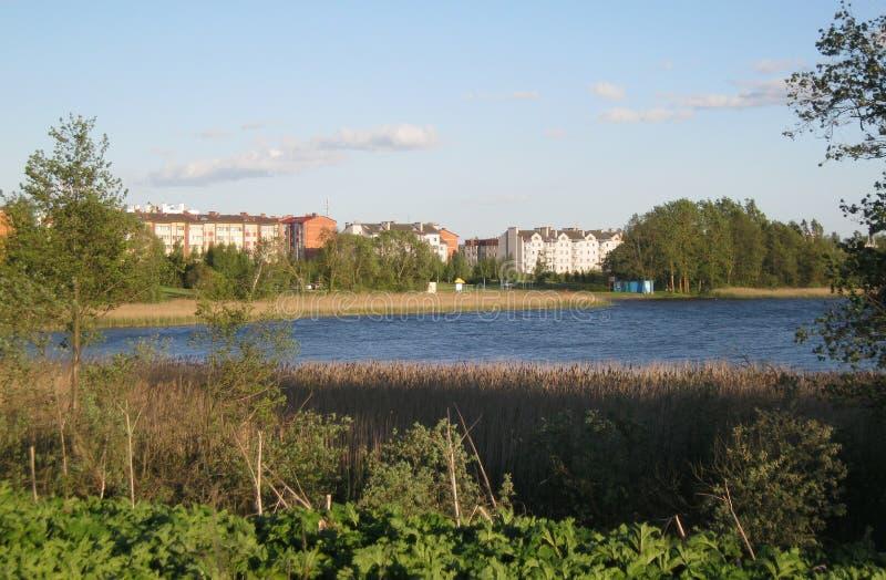 在湖的Braslav 库存图片