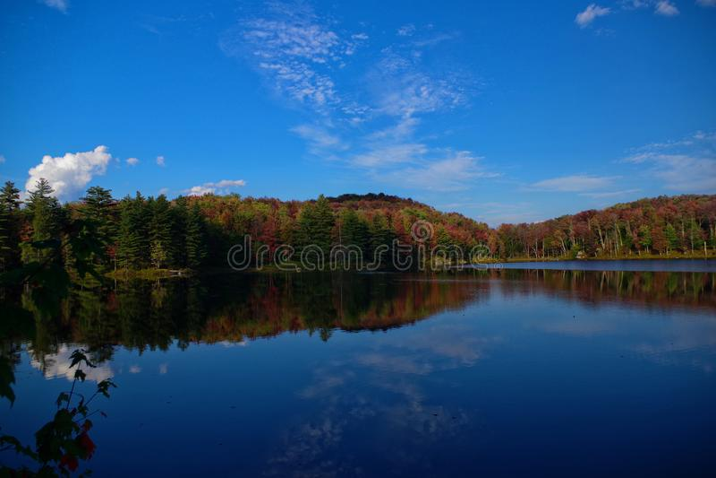 在湖边撤退的五颜六色的秋天叶子叶子在阿第伦达克山脉 秋天的充满活力的红色,黄色和橙色颜色 图库摄影