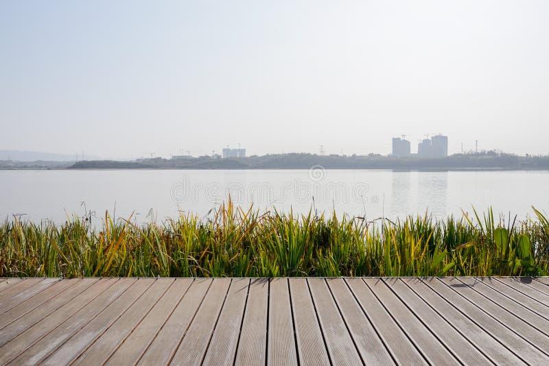 在湖边的象草的planked道路在晴朗的冬天下午 免版税库存照片