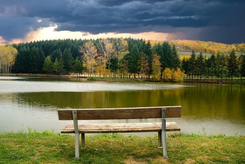 在湖边缘的长凳 库存照片