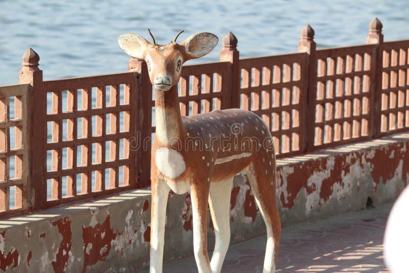 在湖附近的一个鹿雕象 免版税库存照片