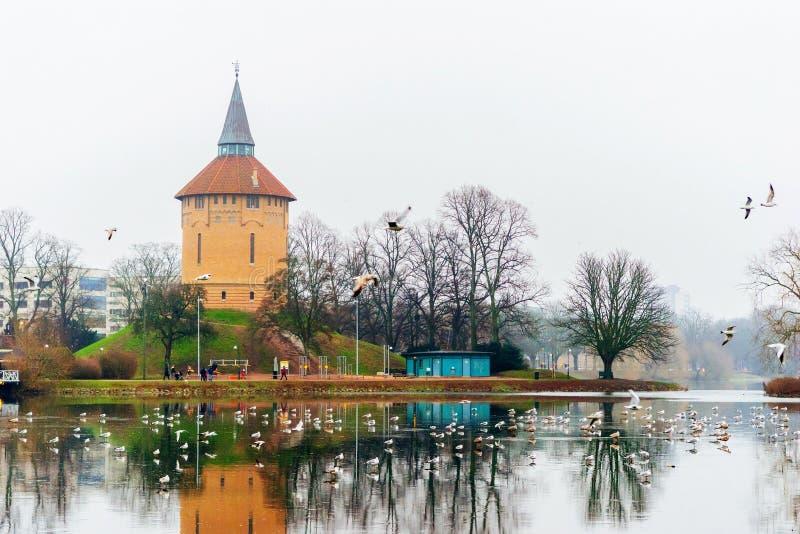 在湖附近的镇定的自然和冬天场面在马尔摩的中心在瑞典 库存图片