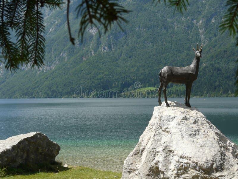 在湖Bohinj的雕象 库存图片