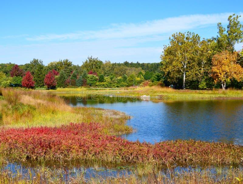 在湖Marmo的秋天 免版税库存照片