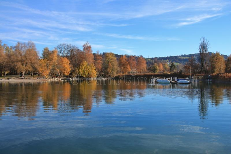 在湖Pfaffikon岸的五颜六色的树  免版税库存照片