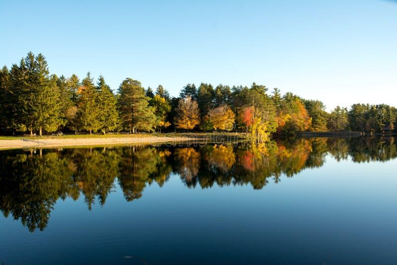 在湖Shaftsbury的秋叶和反射在佛蒙特 免版税库存照片