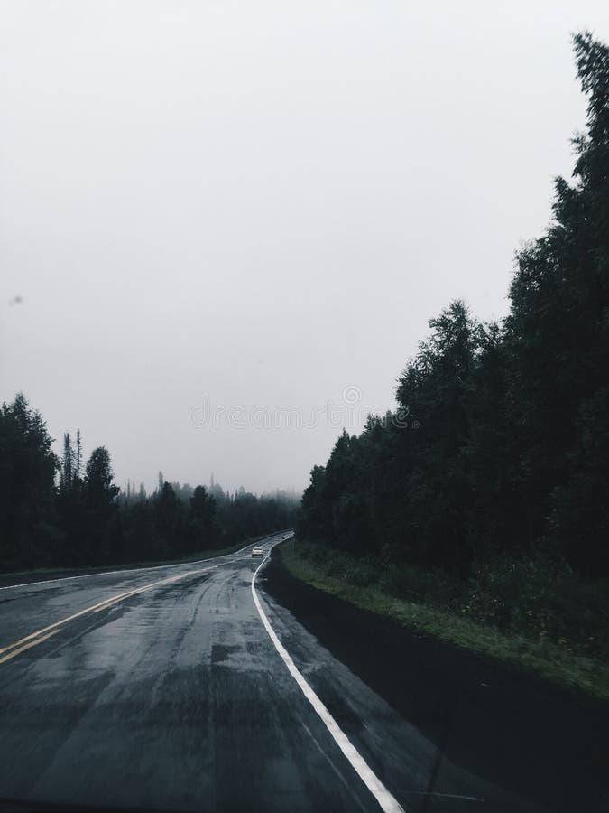 在湿路的清早视图在山的雨以后在雾 库存照片