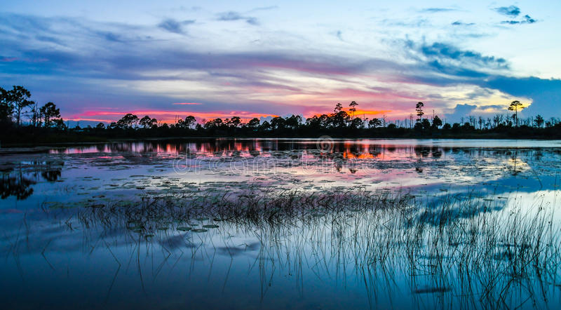 在湿软的池塘的红色天空 免版税库存图片