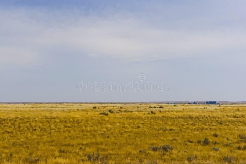在溪附近的大草原,亚伯大,加拿大 免版税图库摄影