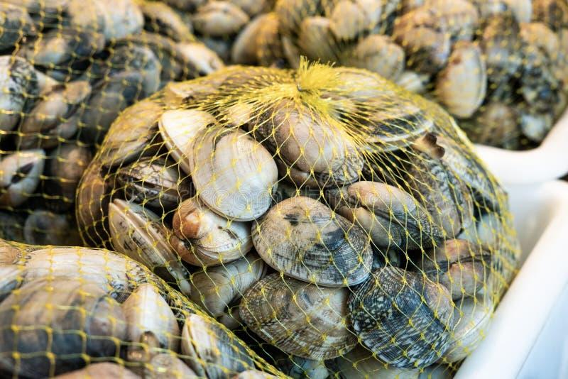在滤网袋子的新鲜的蛤蜊待售在市场上 库存图片