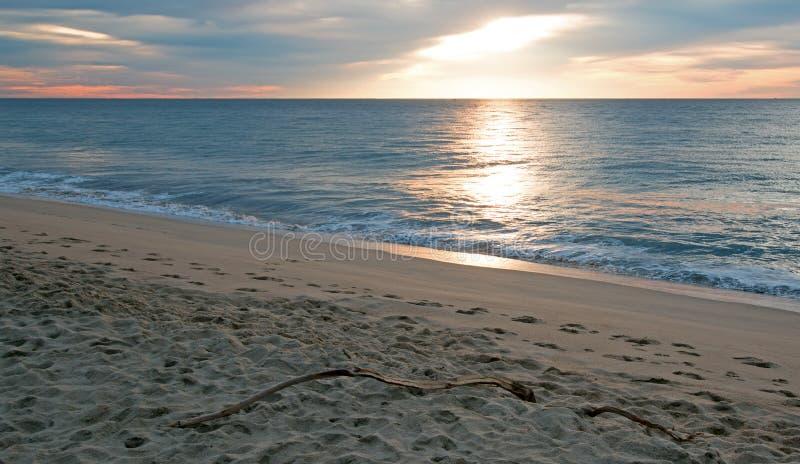 在漂流木头的日出在海滩在圣何塞台尔Cabo在下加利福尼亚州墨西哥 库存照片