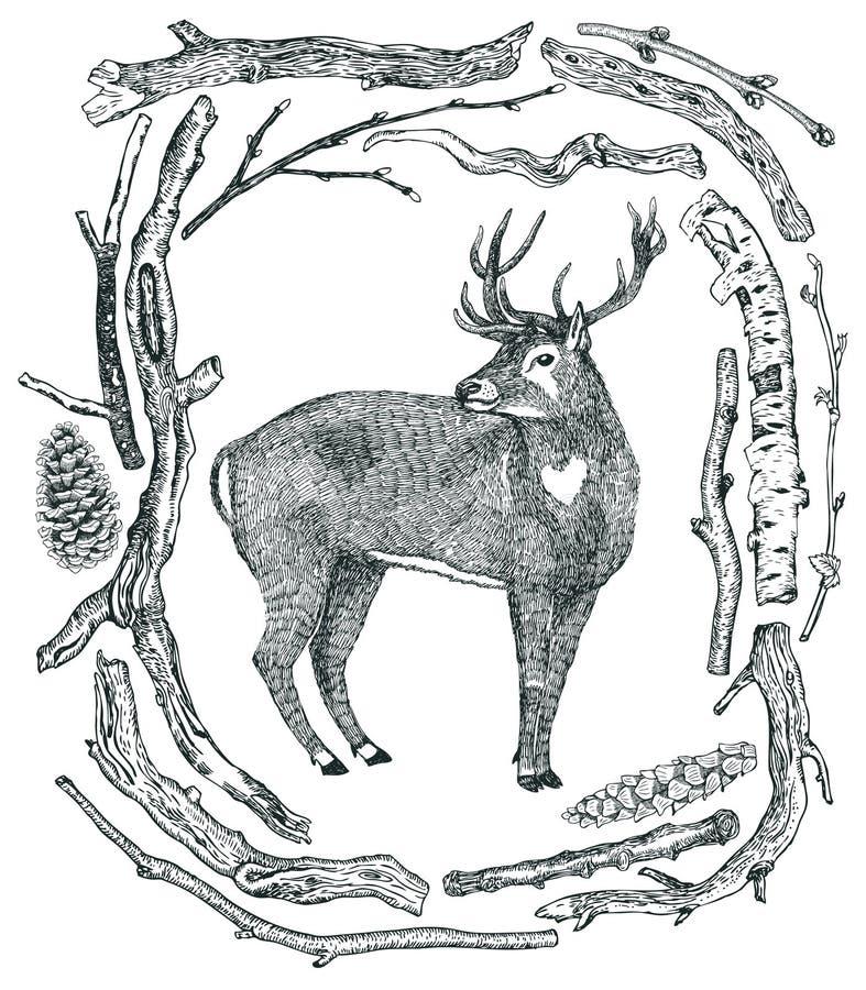 在漂流木头狂放的狂放的wo冬天森林框架的12月鹿  库存例证