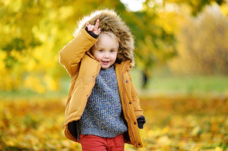 在漫步期间的小男孩在森林里晴朗的秋天天 免版税库存照片