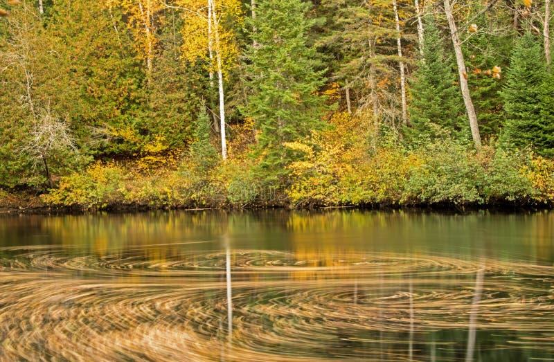 在潮流的秋叶漩涡在约克河 图库摄影