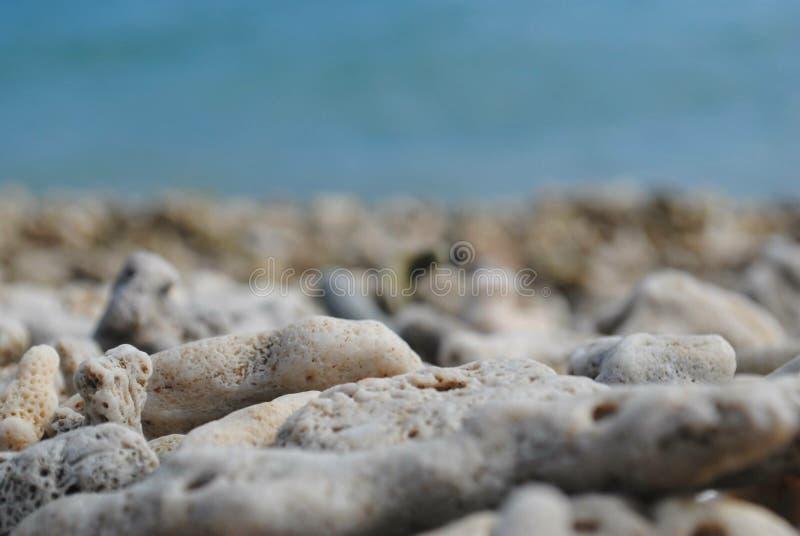 在澳大利亚岸的岩石 图库摄影