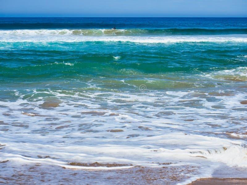 在澳大利亚海滩的粗砺的太平洋波浪 库存照片