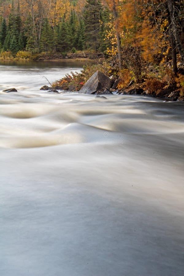 在瀑布下的急流在约克河 库存照片