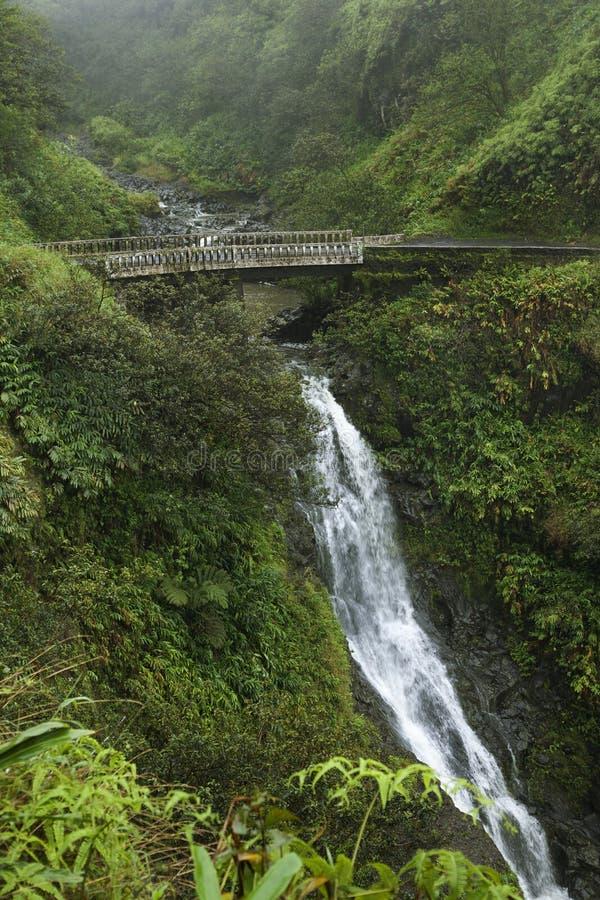 在瀑布之下的桥梁 库存图片