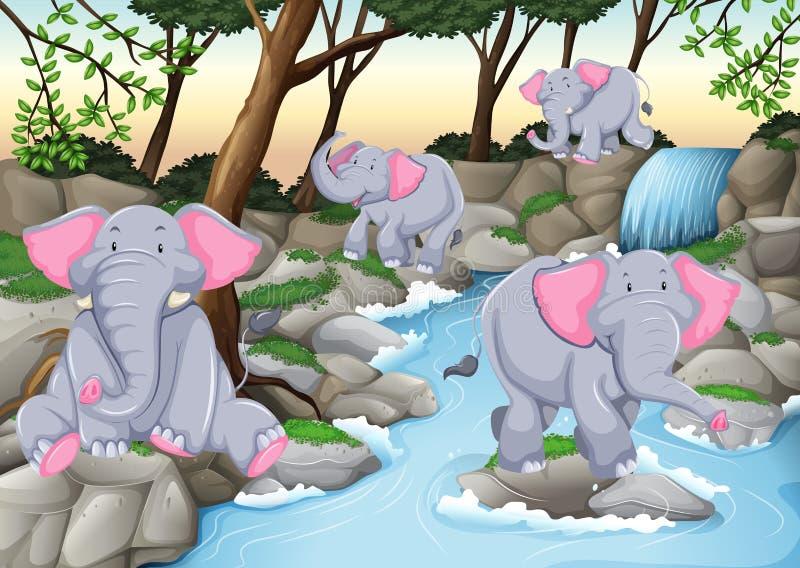 在瀑布的四头大象 向量例证