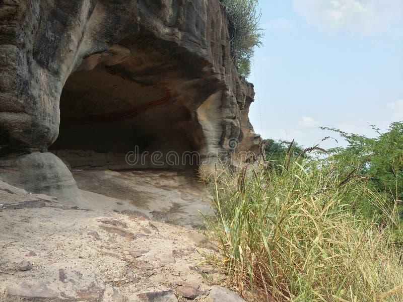 在灌木丛林地的洞与外面领域草 免版税库存图片