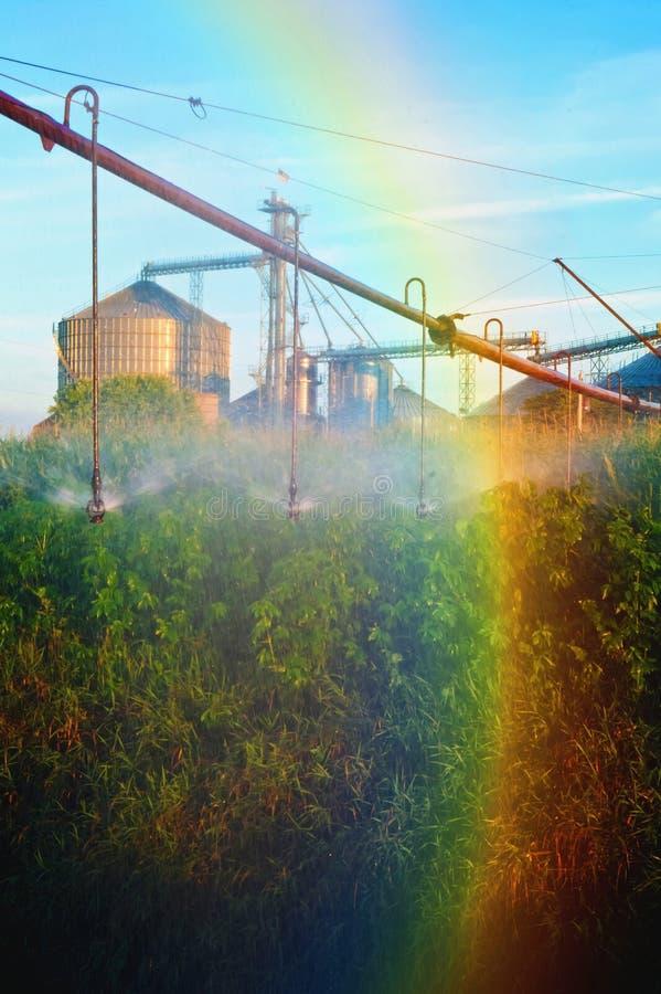 在灌溉浪花的彩虹与谷物仓库筒仓 免版税库存照片