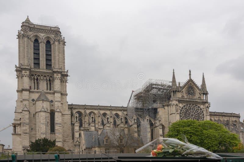 在火以后的巴黎圣母院与花 免版税库存图片