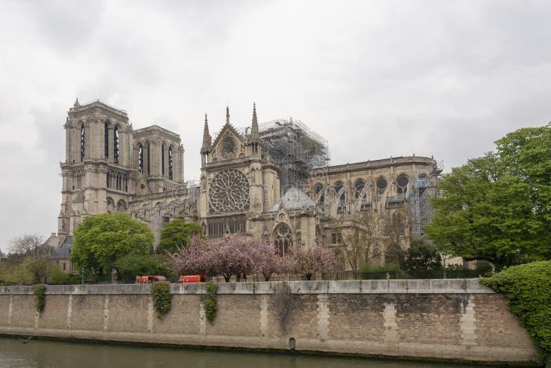 在火以后的巴黎圣母院 库存图片