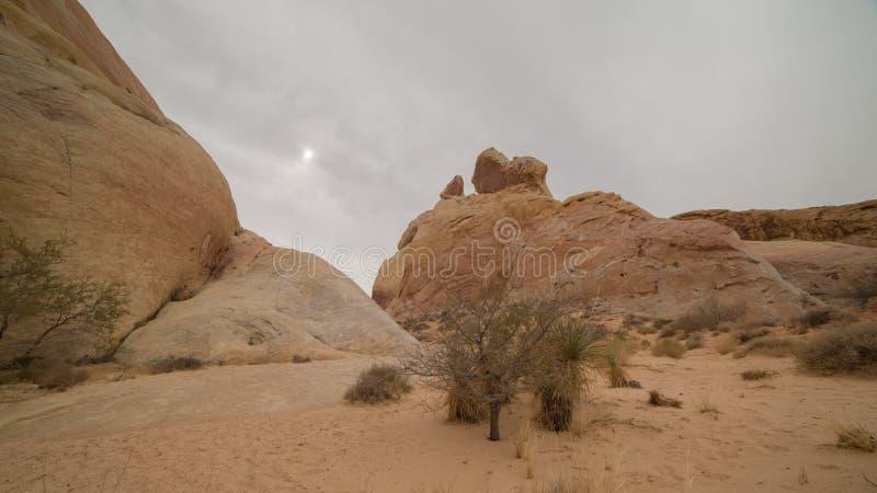 在火内华达谷的沙漠风景  免版税库存照片
