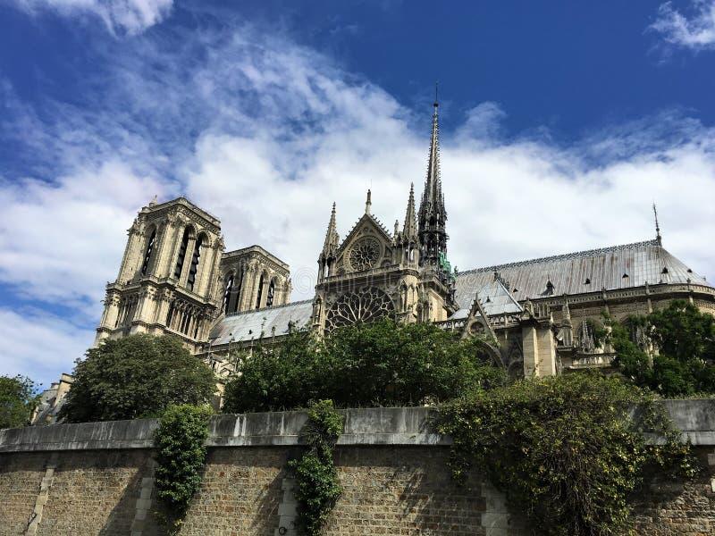 在火前的Notre Dame 免版税库存图片