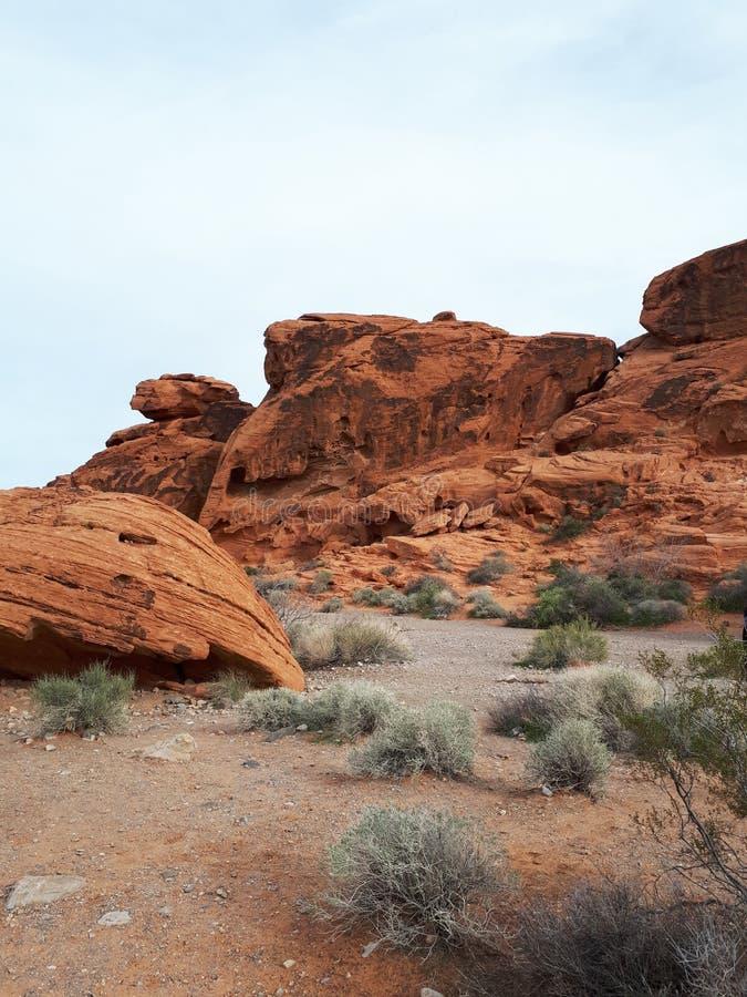 在火国家公园谷的独特和五颜六色的岩层  免版税库存图片
