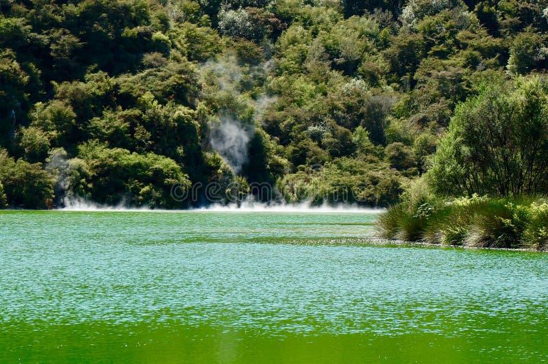 在火山区域附近的一个绿色湖 库存照片