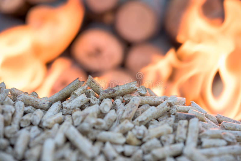在火焰的生物量 免版税库存图片