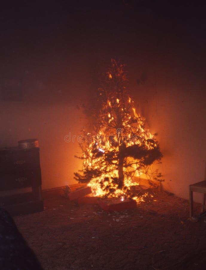 在火的圣诞树 免版税图库摄影