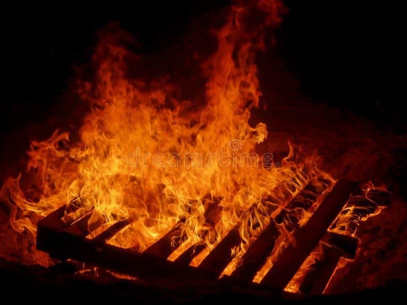 在火的木头 库存图片