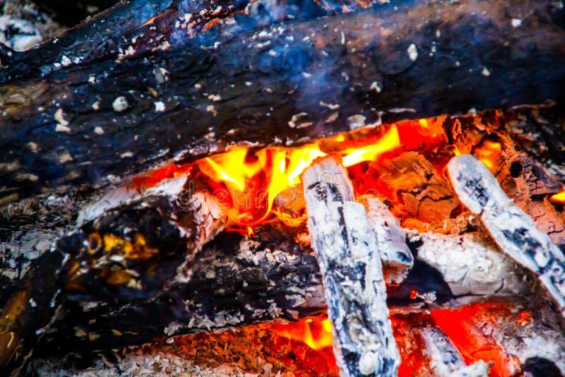 在火的燃烧的木头 免版税库存图片