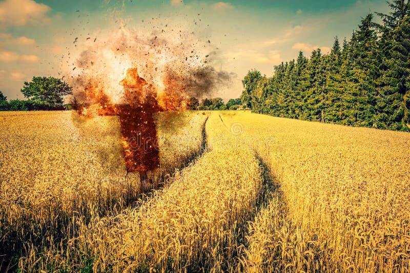 在火的稻草人在领域 免版税图库摄影