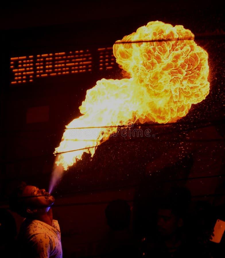 在火看见的merigold花 免版税库存照片